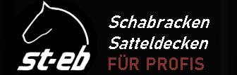st-eb-Logo